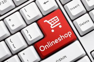 Создание портала интернет магазина под ключ с нуля своими силами инструкция онлайн бесплатно