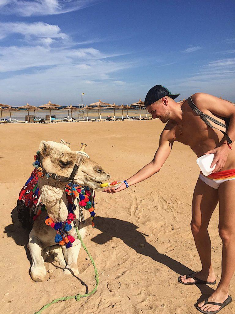 Лучший отдых в Египте.